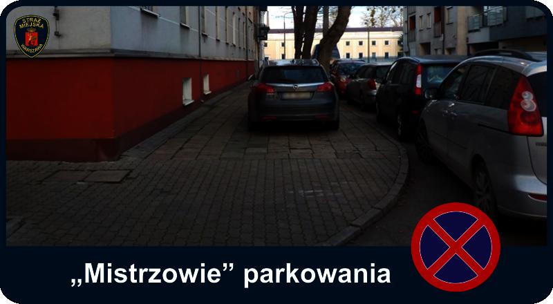 Mistrzowie parkowania - auto zaparkowane centralnie na chodniku