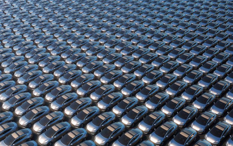 Flota nowych aut, samochody, rynek